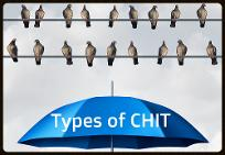 Types of chit